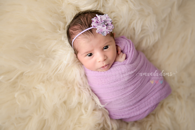 amanda-dams-newborn-photography-18