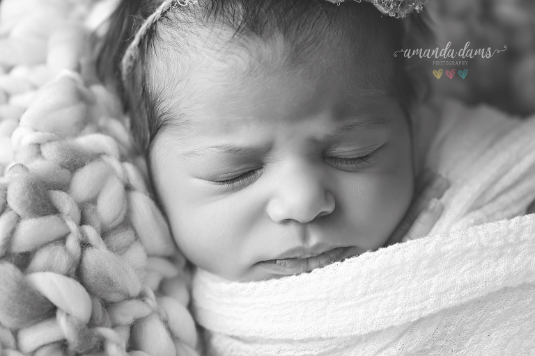 amanda-dams-newborn-photography-5