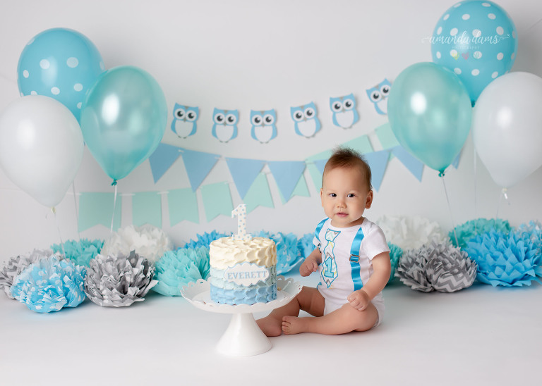 mint-blue-white-owl-cake-smash-baby-boy